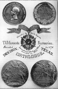 Medals from the Paris 1889 Exposition Universelle